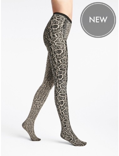 Wolford Blotched Snake ,Wolford